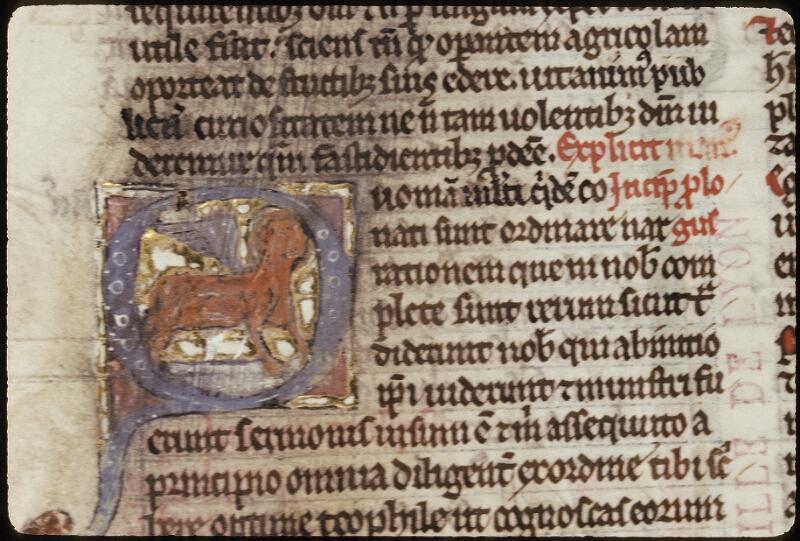 Lyon, Bibl. mun., ms. 0421, f. 362v - vue 1