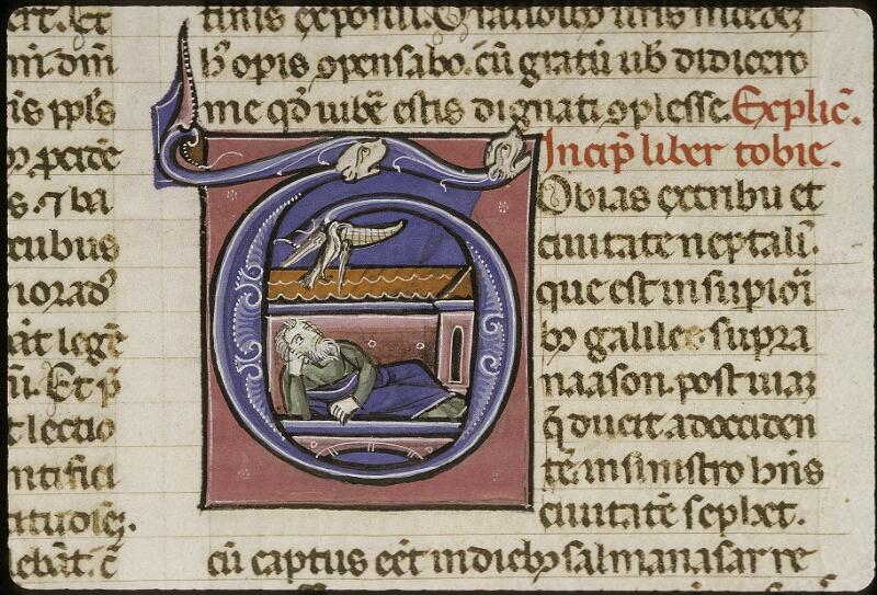 Lyon, Bibl. mun., ms. 0424, f. 195v - vue 2