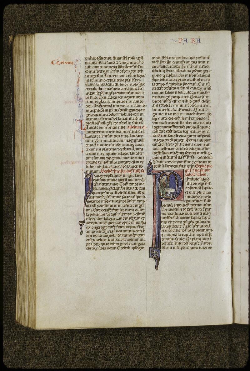 Lyon, Bibl. mun., ms. 0424, f. 246v - vue 1