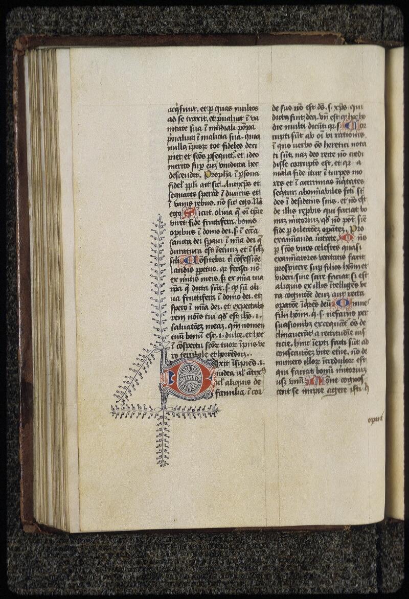 Lyon, Bibl. mun., ms. 0454, f. 073v