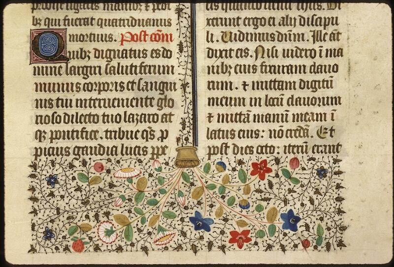 Lyon, Bibl. mun., ms. 0517, f. 315