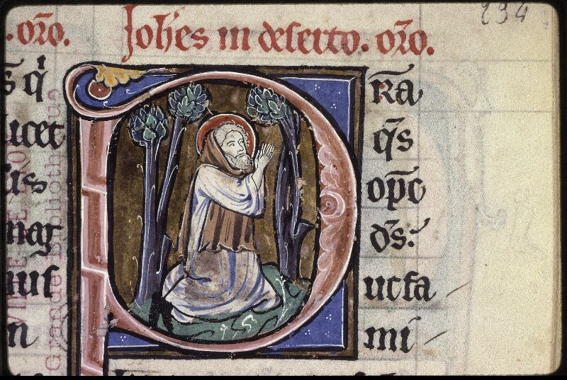 Lyon, Bibl. mun., ms. 0539, f. 234 - vue 3