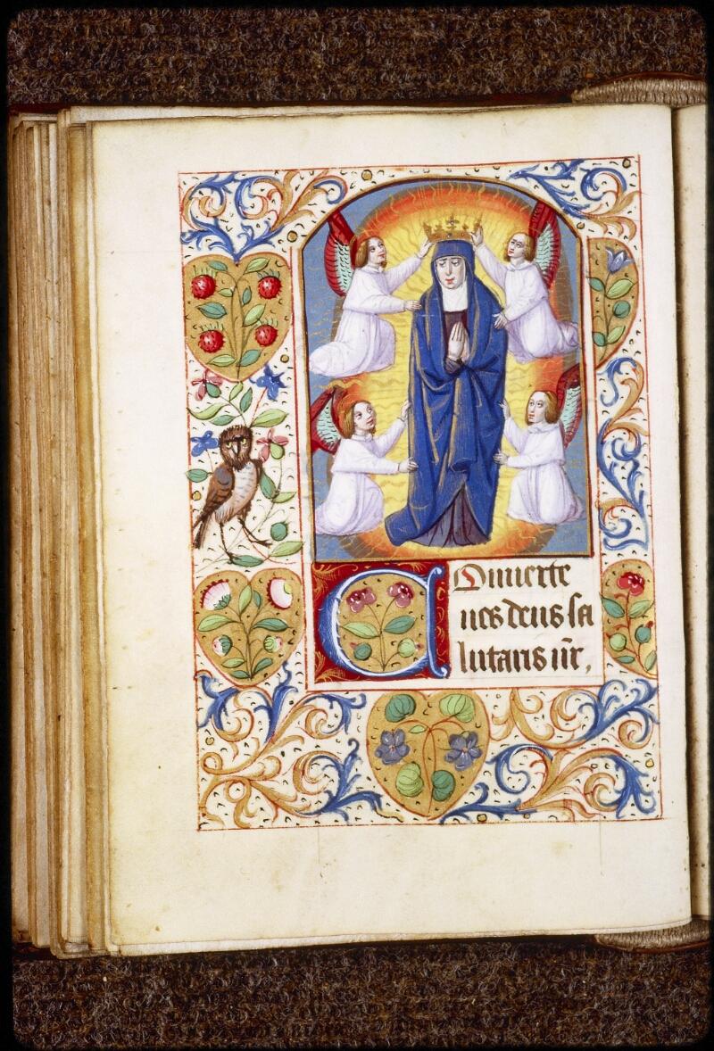 Lyon, Bibl. mun., ms. 0577, f. 079v - vue 1