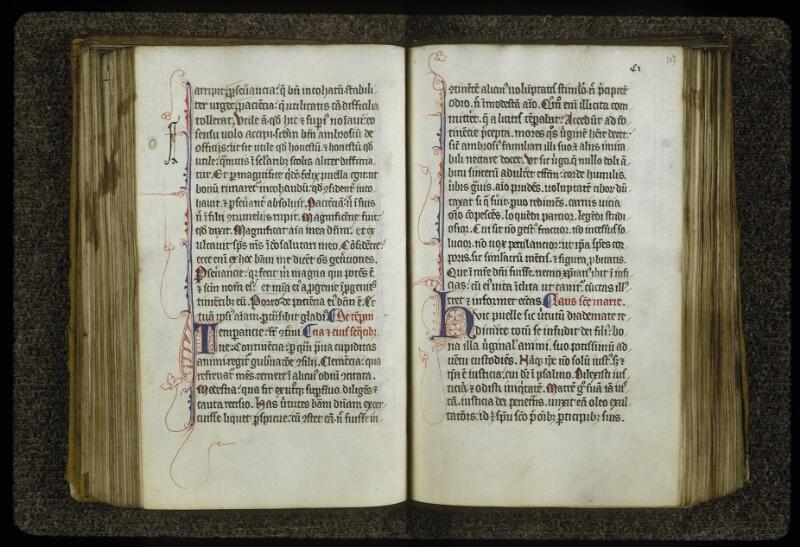 Lyon, Bibl. mun., ms. 0622, f. 106v-107