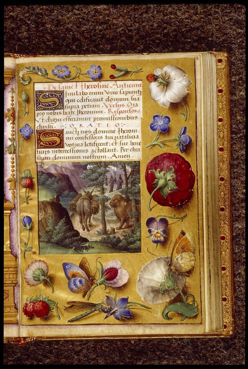 Lyon, Bibl. mun., ms. 1558, f. 008 - vue 1