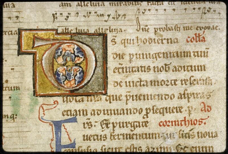 Lyon, Bibl. mun., ms. 5126, f. 074v - vue 2