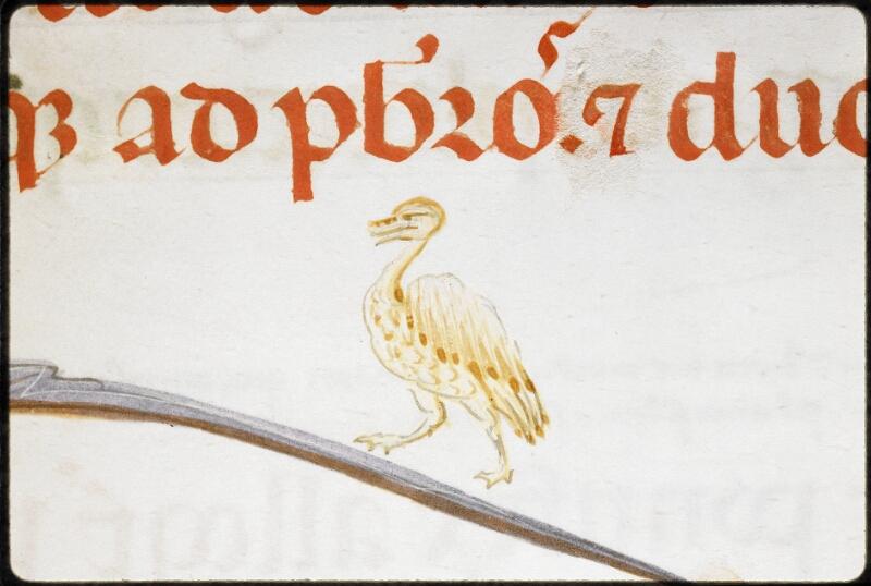 Lyon, Bibl. mun., ms. 5132, f. 019 - vue 3