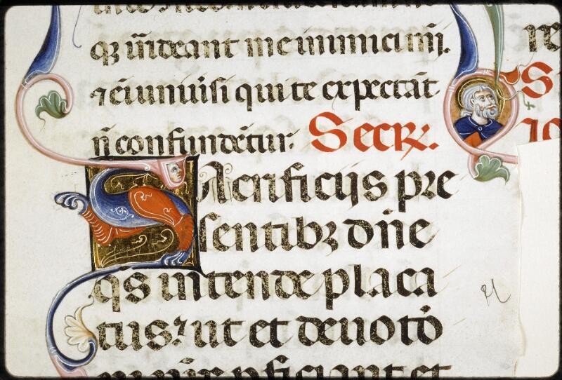 Lyon, Bibl. mun., ms. 5135, f. 015 - vue 2