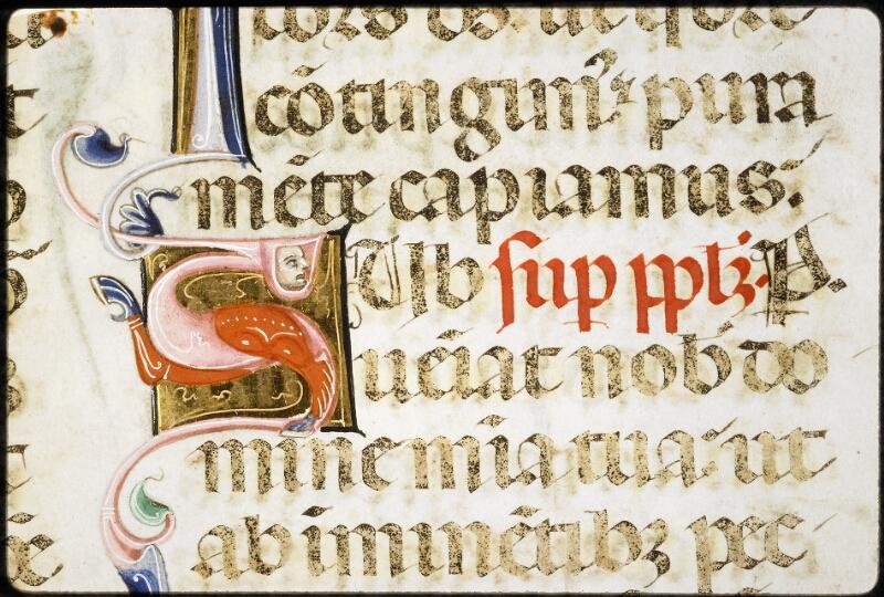 Lyon, Bibl. mun., ms. 5135, f. 018v - vue 2