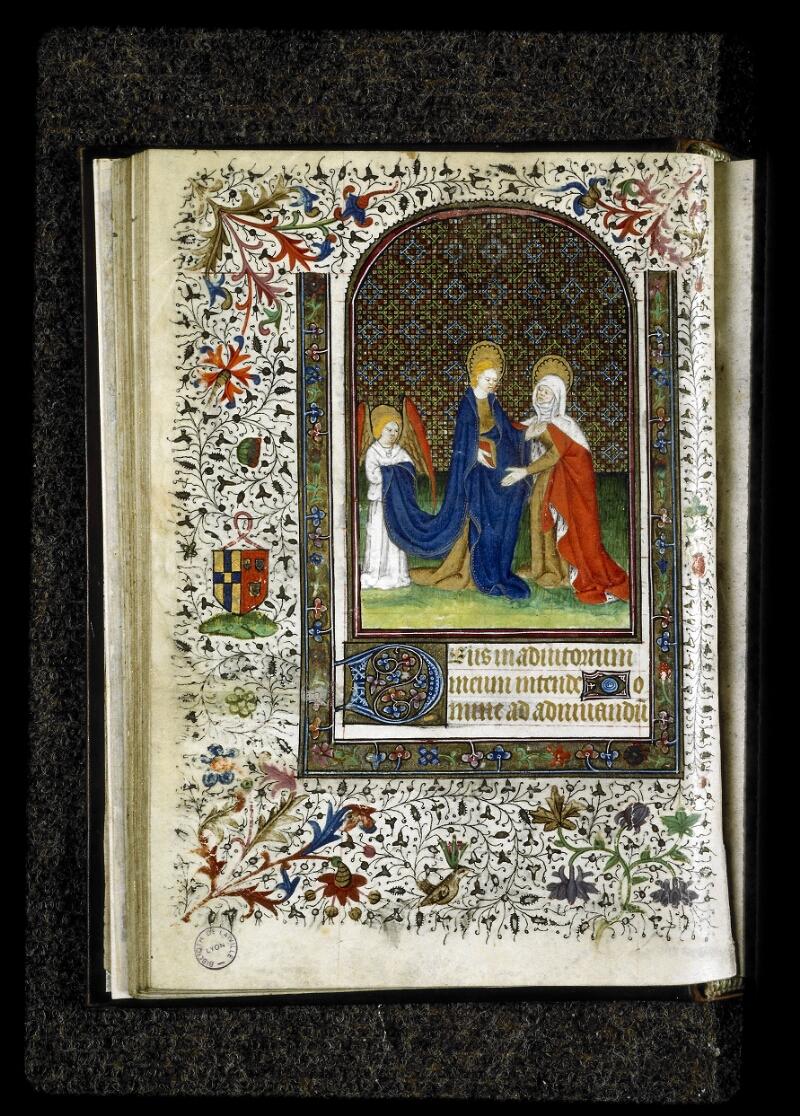 Lyon, Bibl. mun., ms. 5142, f. 028v - vue 1