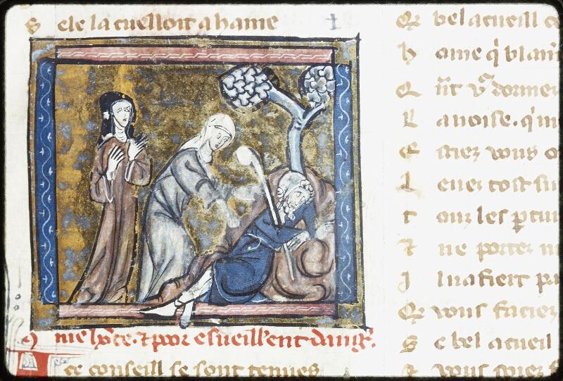 Lyon, Bibl. mun., ms. Palais des Arts 024, f. 019 - vue 2