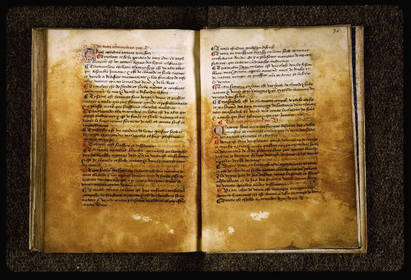 Lyon, Bibl. mun., ms. Palais des Arts 026, f. 075v-076