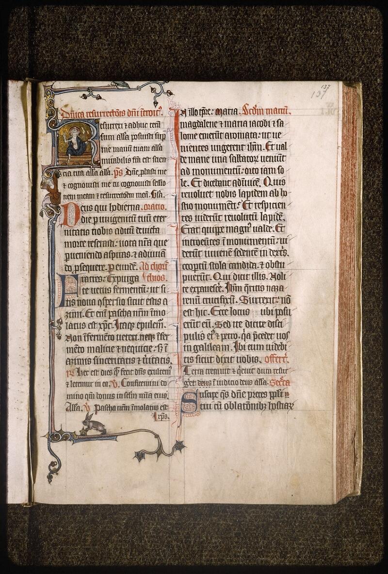 Lyon, Bibl. mun., ms. Palais des Arts 037, f. 137 - vue 1