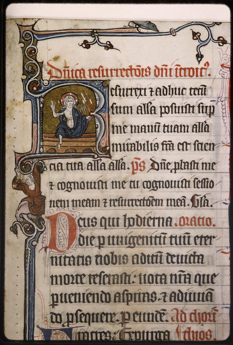 Lyon, Bibl. mun., ms. Palais des Arts 037, f. 137 - vue 2