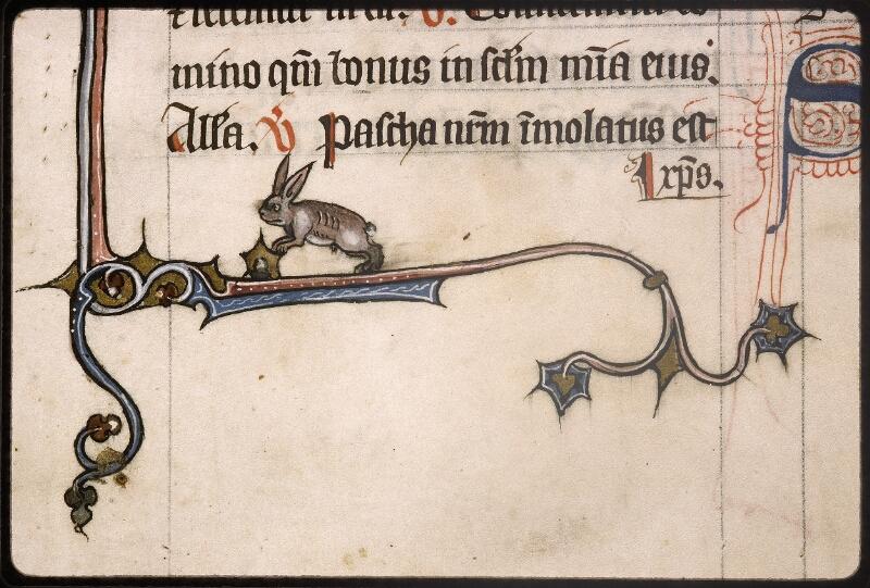 Lyon, Bibl. mun., ms. Palais des Arts 037, f. 137 - vue 3