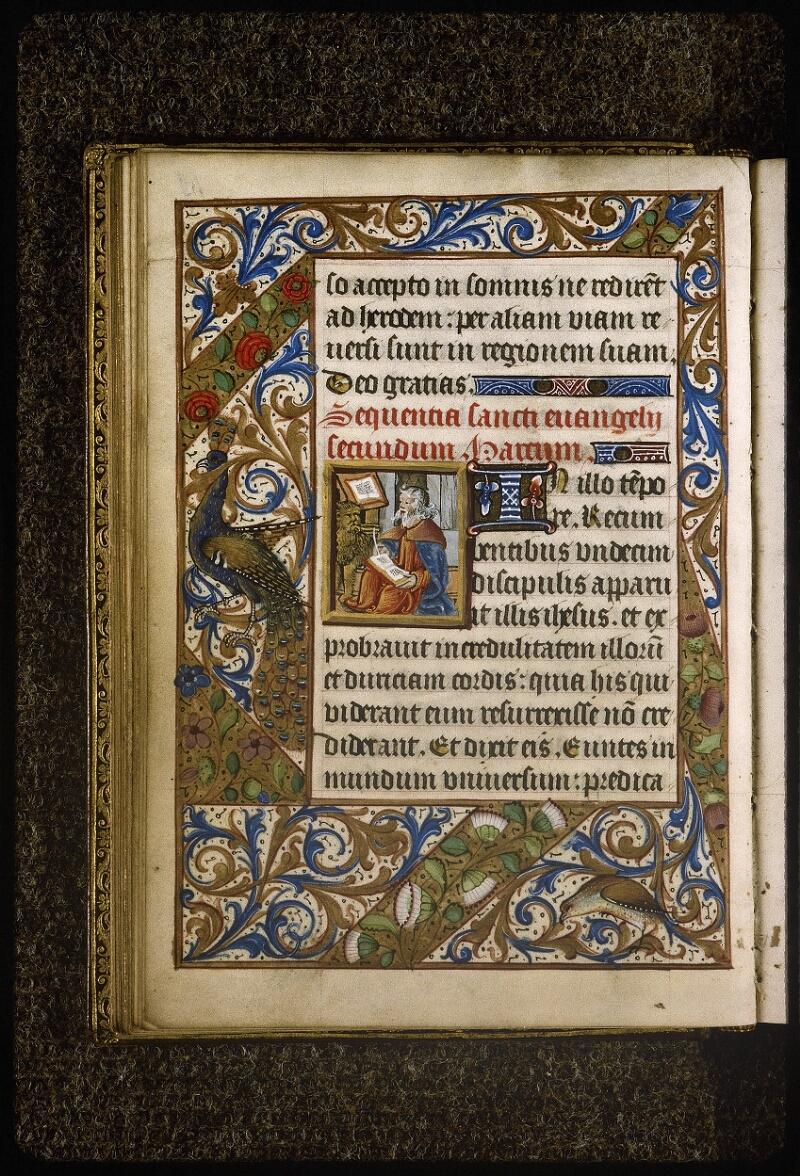 Lyon, Bibl. mun., ms. Palais des Arts 038, f. 019v - vue 1