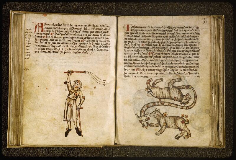Lyon, Bibl. mun., ms. Palais des Arts 045, f. 072v-073 - vue 2