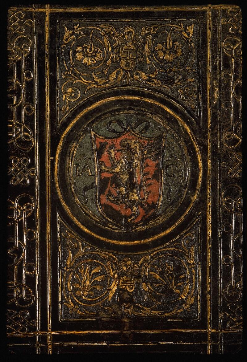 Lyon, Bibl. mun., ms. Palais des Arts 047, reliure plat inf. - vue 2