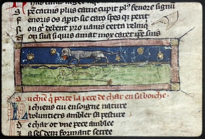 Lyon, Bibl. mun., ms. Palais des Arts 057, f. 007