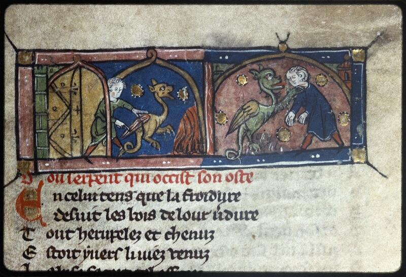 Lyon, Bibl. mun., ms. Palais des Arts 057, f. 015