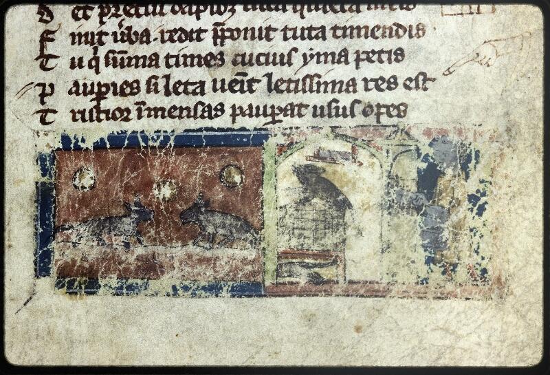 Lyon, Bibl. mun., ms. Palais des Arts 057, f. 017