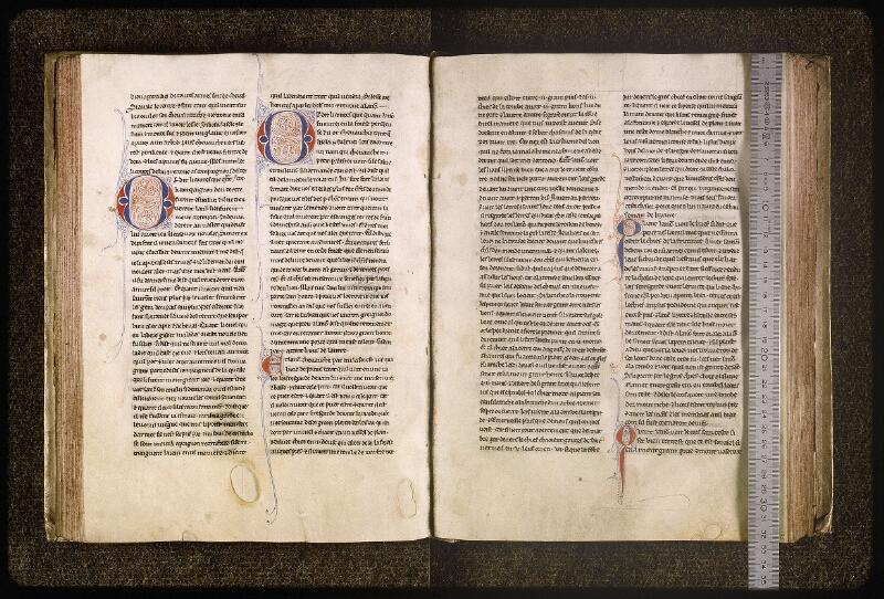 Lyon, Bibl. mun., ms. Palais des Arts 077, f. 084v-085 - vue 1