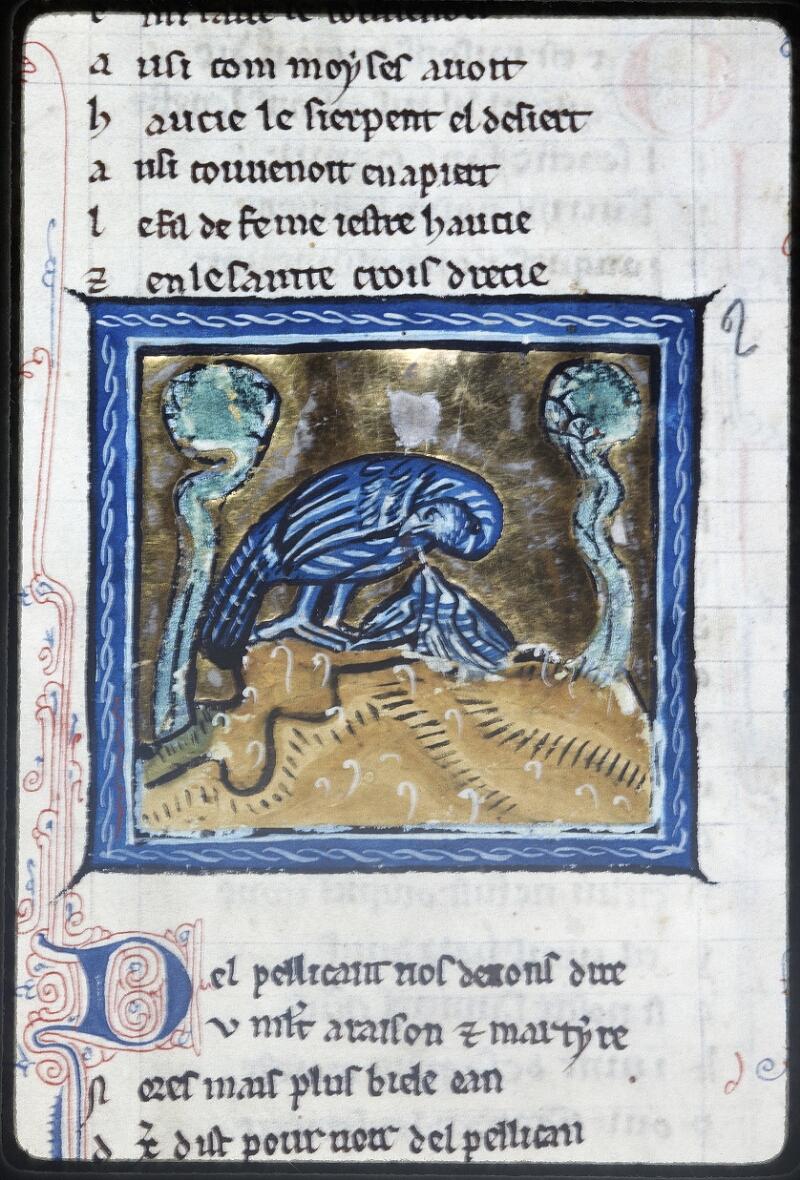 Lyon, Bibl. mun., ms. Palais des Arts 078, f. 036v