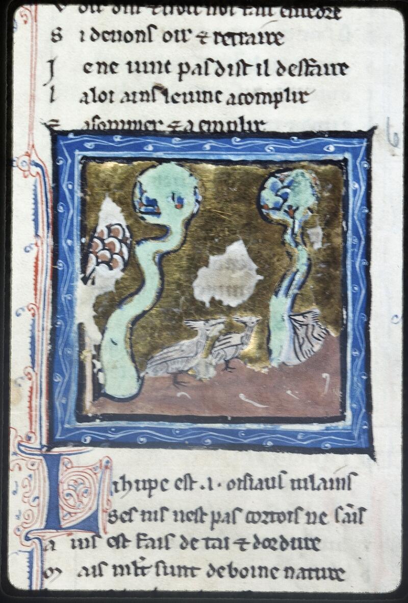 Lyon, Bibl. mun., ms. Palais des Arts 078, f. 038v