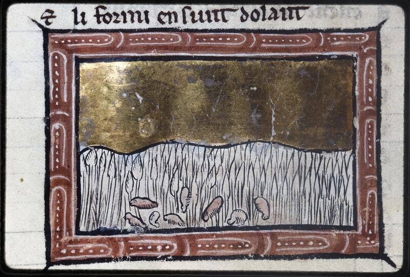 Lyon, Bibl. mun., ms. Palais des Arts 078, f. 039v