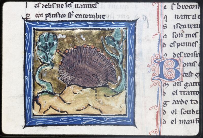 Lyon, Bibl. mun., ms. Palais des Arts 078, f. 040v