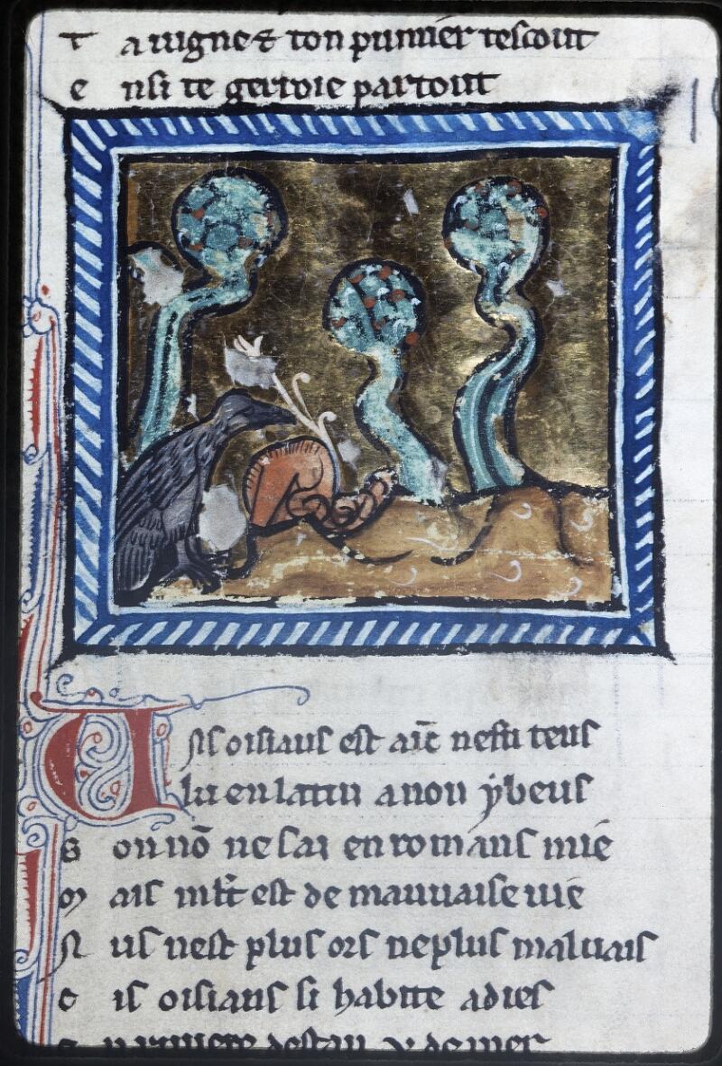 Lyon, Bibl. mun., ms. Palais des Arts 078, f. 041