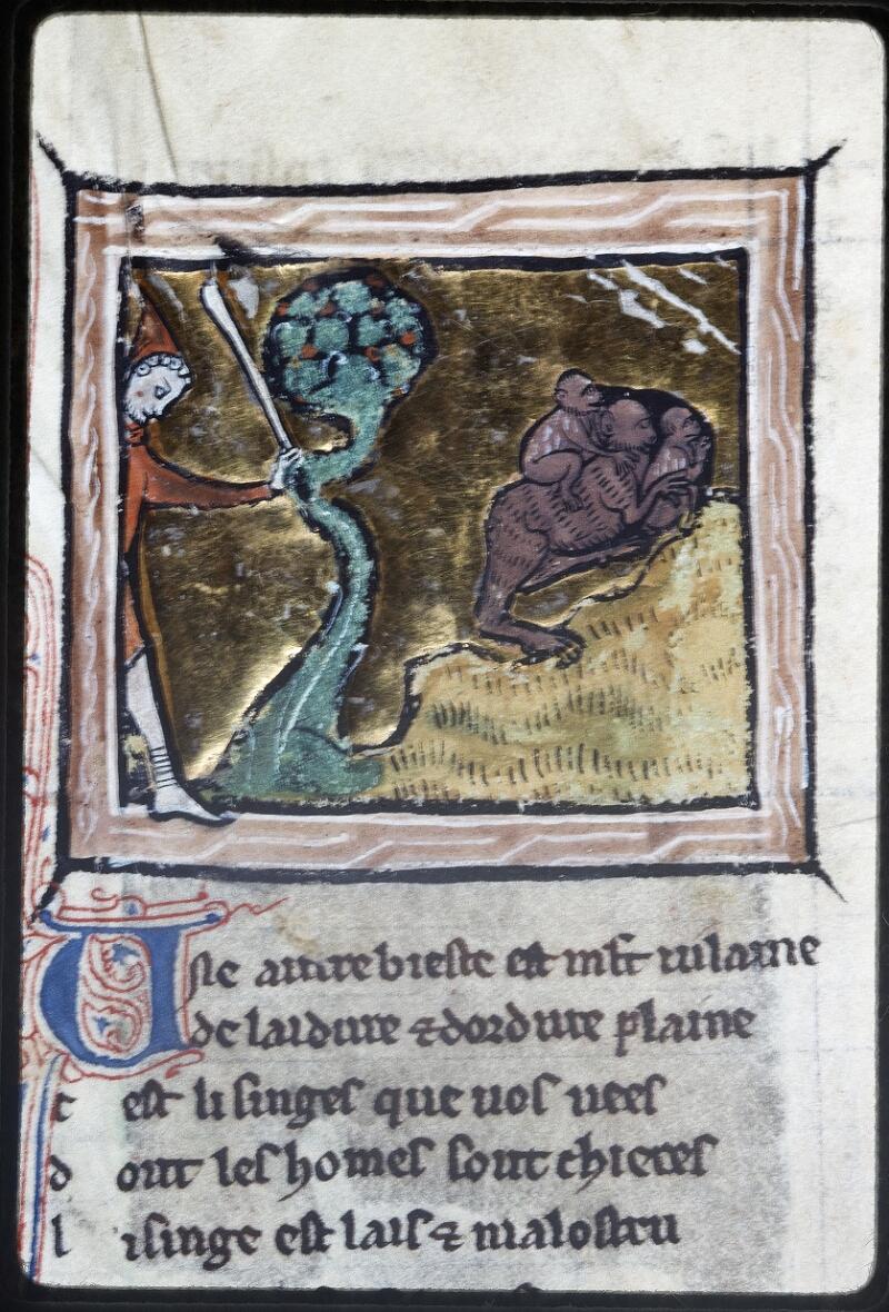 Lyon, Bibl. mun., ms. Palais des Arts 078, f. 044