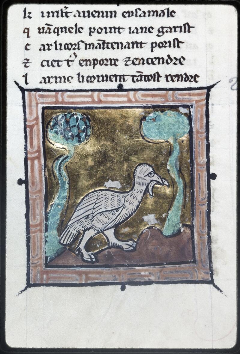 Lyon, Bibl. mun., ms. Palais des Arts 078, f. 048