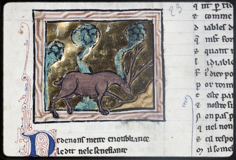 Lyon, Bibl. mun., ms. Palais des Arts 078, f. 049v