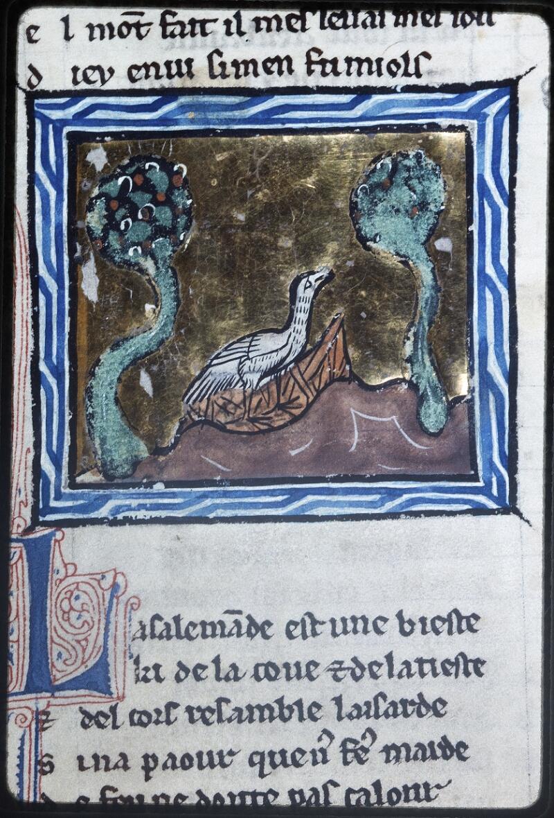 Lyon, Bibl. mun., ms. Palais des Arts 078, f. 050