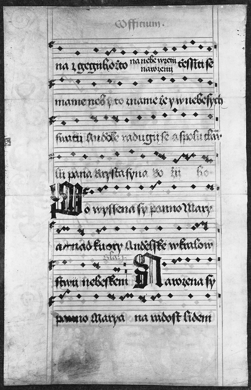 Prague, Musée nat., Bibl., 1. A. c. 086, 1 - vue 5