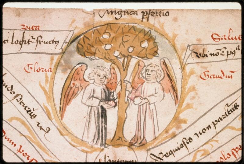 Prague, Musée nat., Bibl., 1. D. a. 001, 30, f. 001 - vue 3