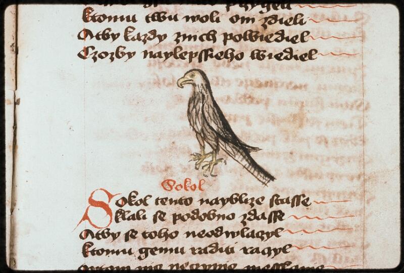 Prague, Musée nat., Bibl., II. F. 09, f. 166