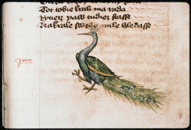 Prague, Musée nat., Bibl., II. F. 09, f. 172