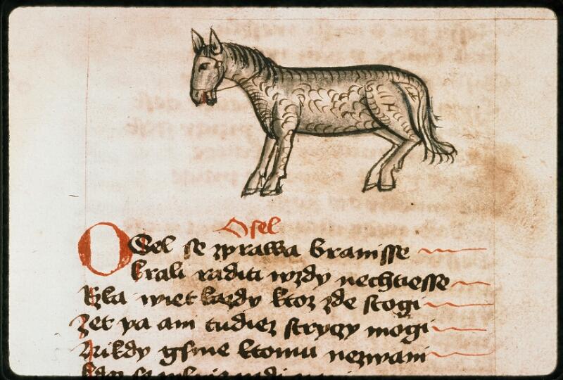 Prague, Musée nat., Bibl., II. F. 09, f. 176