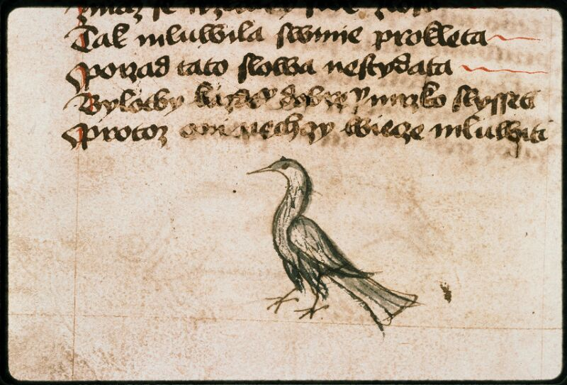 Prague, Musée nat., Bibl., II. F. 09, f. 178v