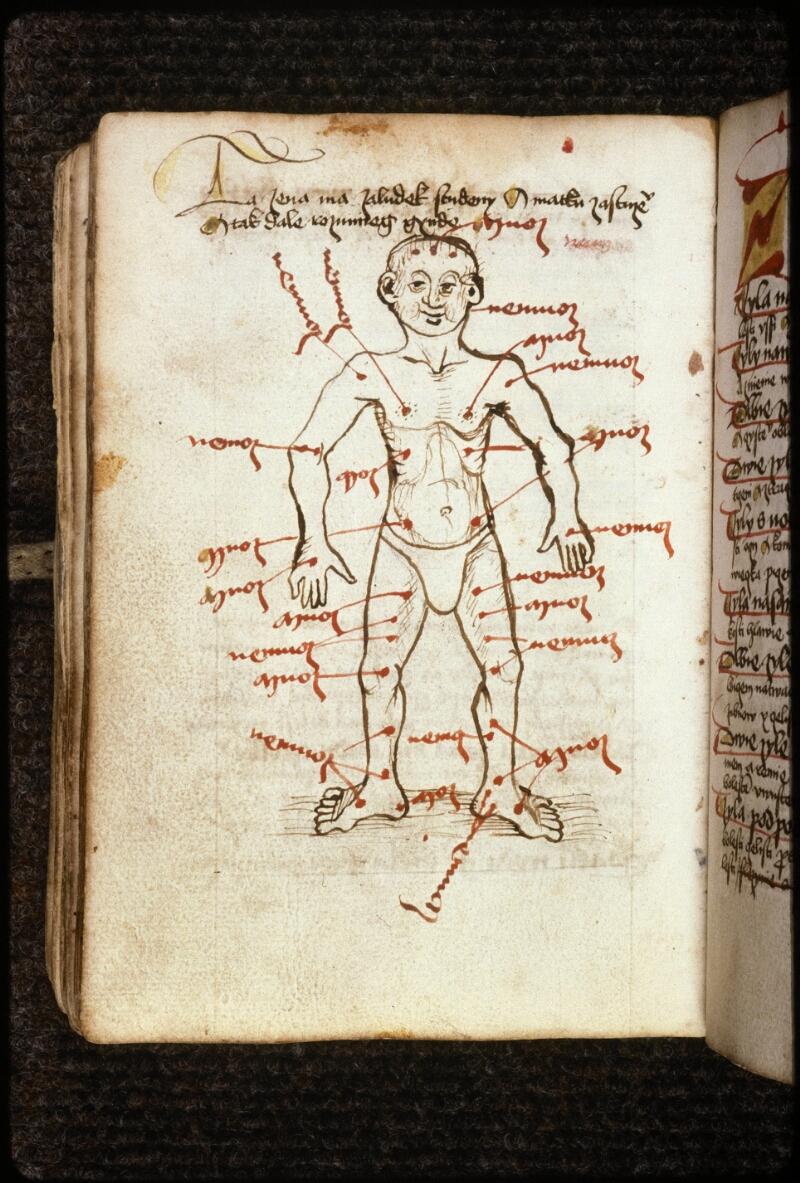 Prague, Musée nat., Bibl., IV. H. 60, p. 344