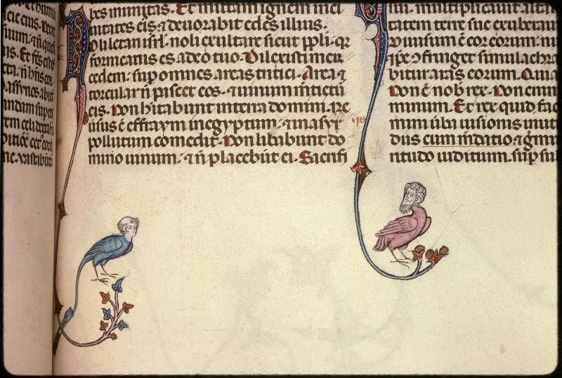 Prague, Musée nat., Bibl., XII. A. 10, f. 329