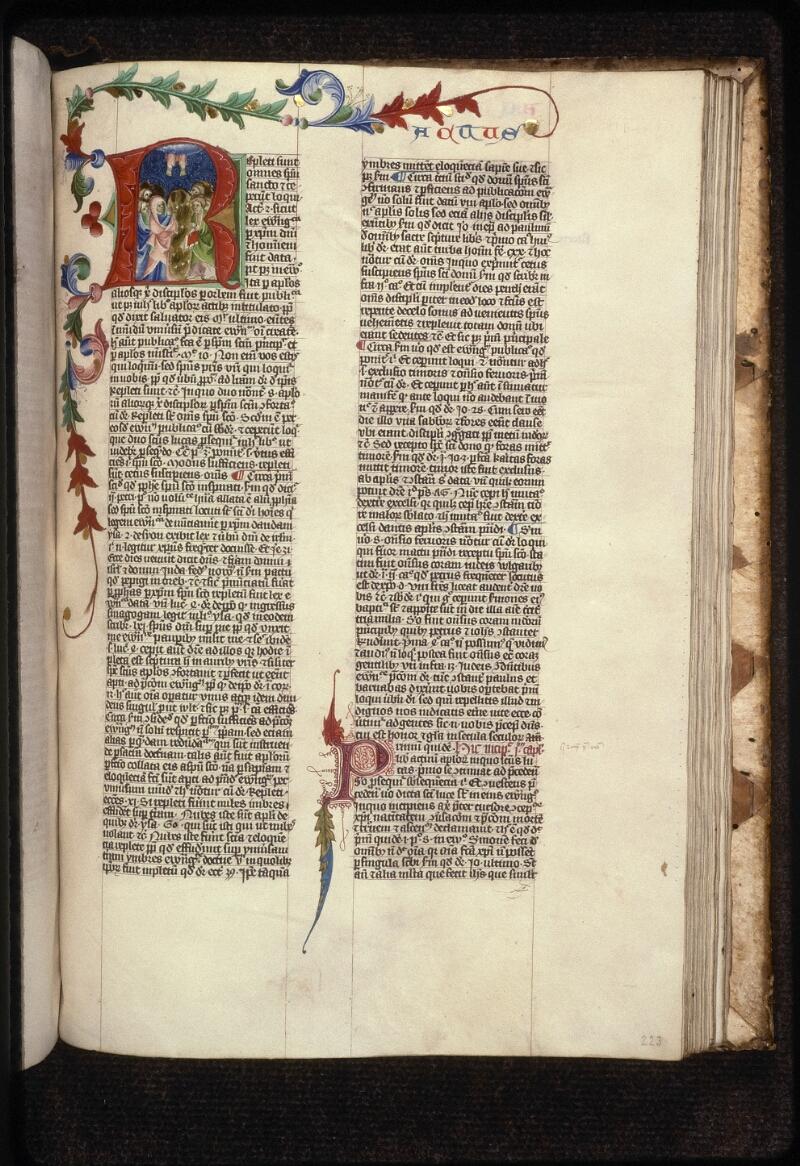 Prague, Musée nat., Bibl., XII. A. 17, f. 223 - vue 1