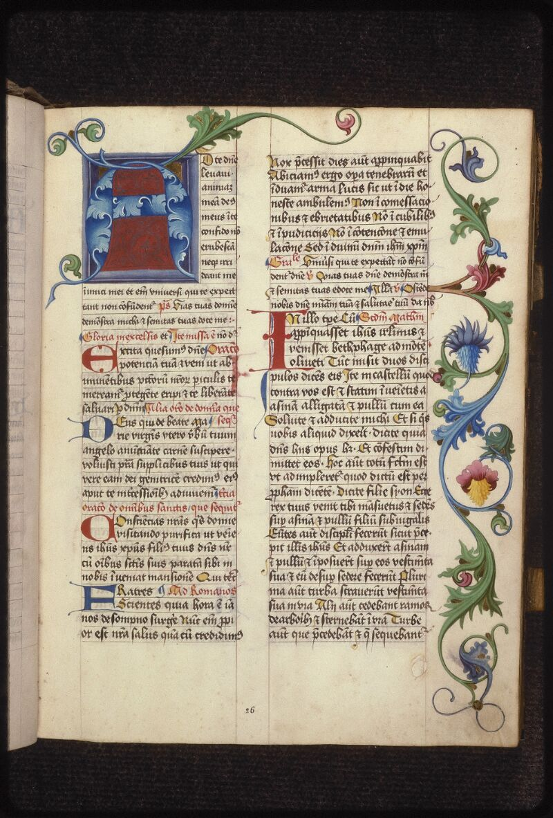 Prague, Musée nat., Bibl., XII. B. 17, f. 026