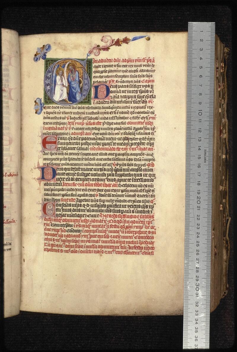 Prague, Musée nat., Bibl., XIII. C. 01, f. 088 - vue 1
