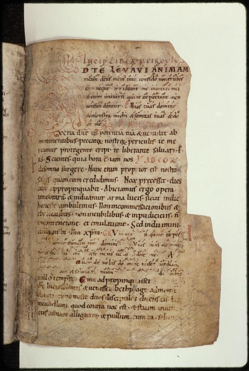 Prague, Musée nat., Bibl., XIV. D. 12, f. 041