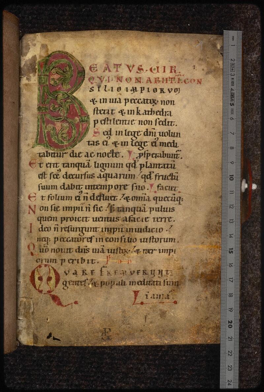 Prague, Musée nat., Bibl., XV. F. 26, f. 001 - vue 1