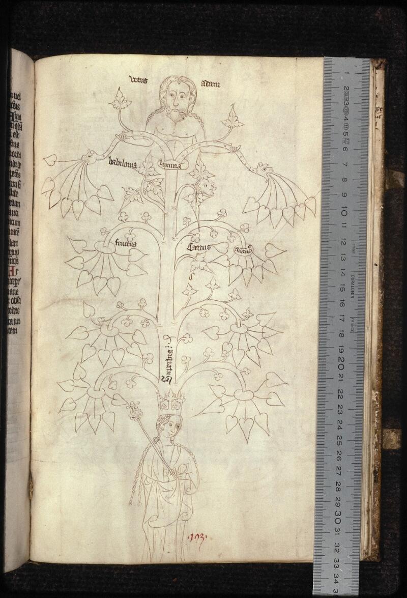 Prague, Musée nat., Bibl., XVI. B. 13, f. 193 - vue 1