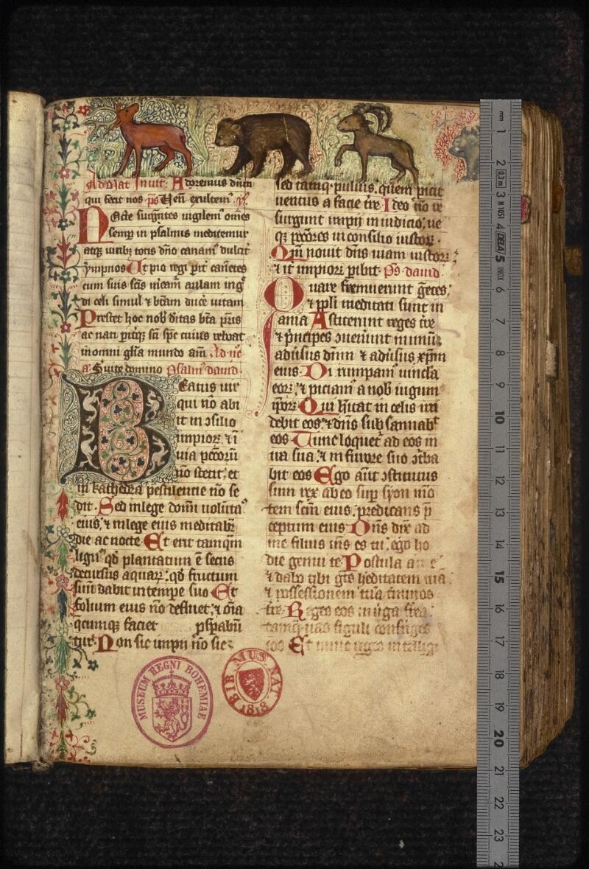 Prague, Musée nat., Bibl., XVI. F. 10, f. 007 - vue 1